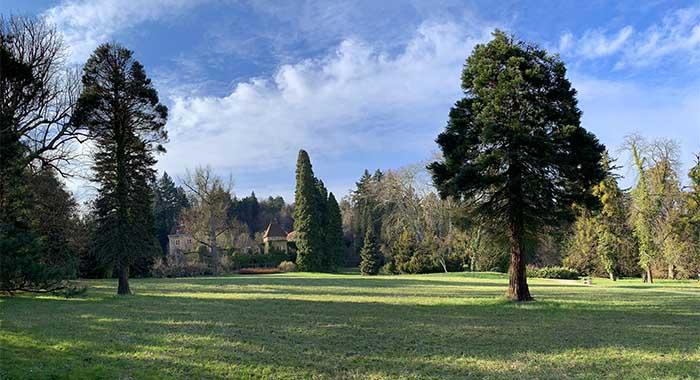 Arboretum Opeka: izlet u najbolji park kontinentalne Hrvatske