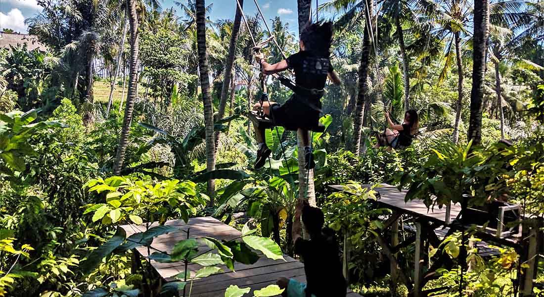 Ljuljačke iznad džungle