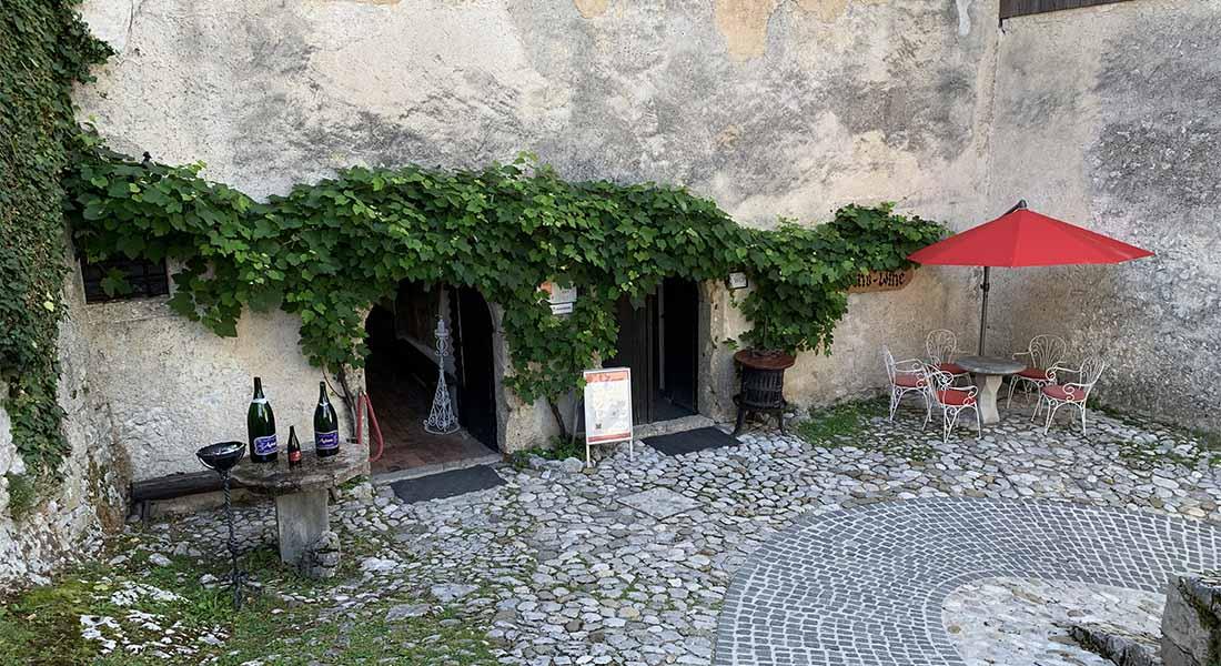 Dvorac u Bledu