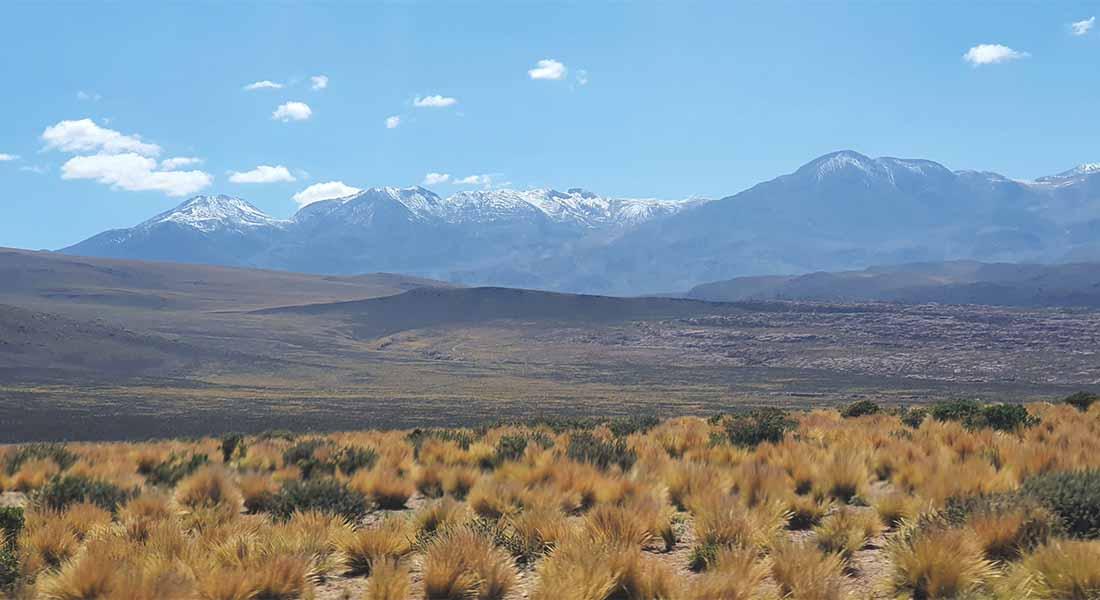 Priroda Čile 5