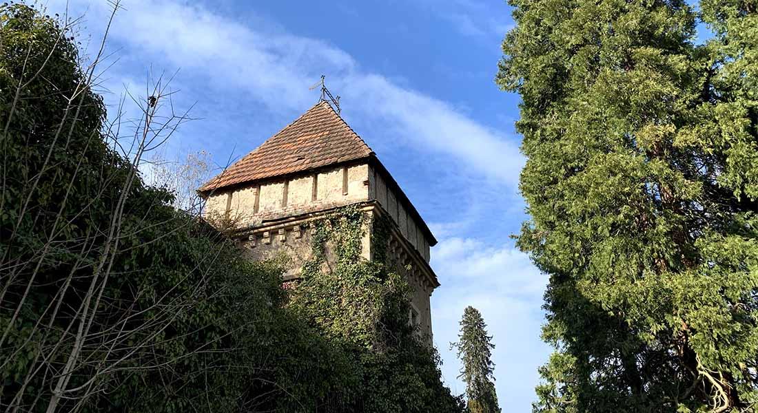 Dvorac i arboretum Opeka
