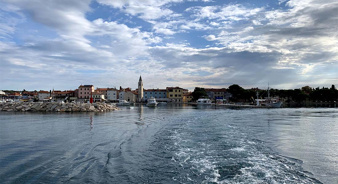 Fažana u Istri