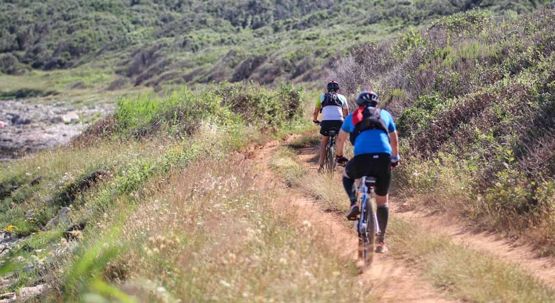 Aktivan odmor u Istri: biciklizam