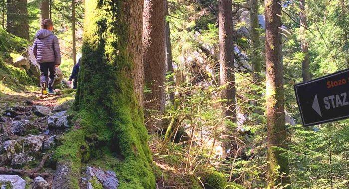 Park šuma Golubinjak: Gorski kotar u malom