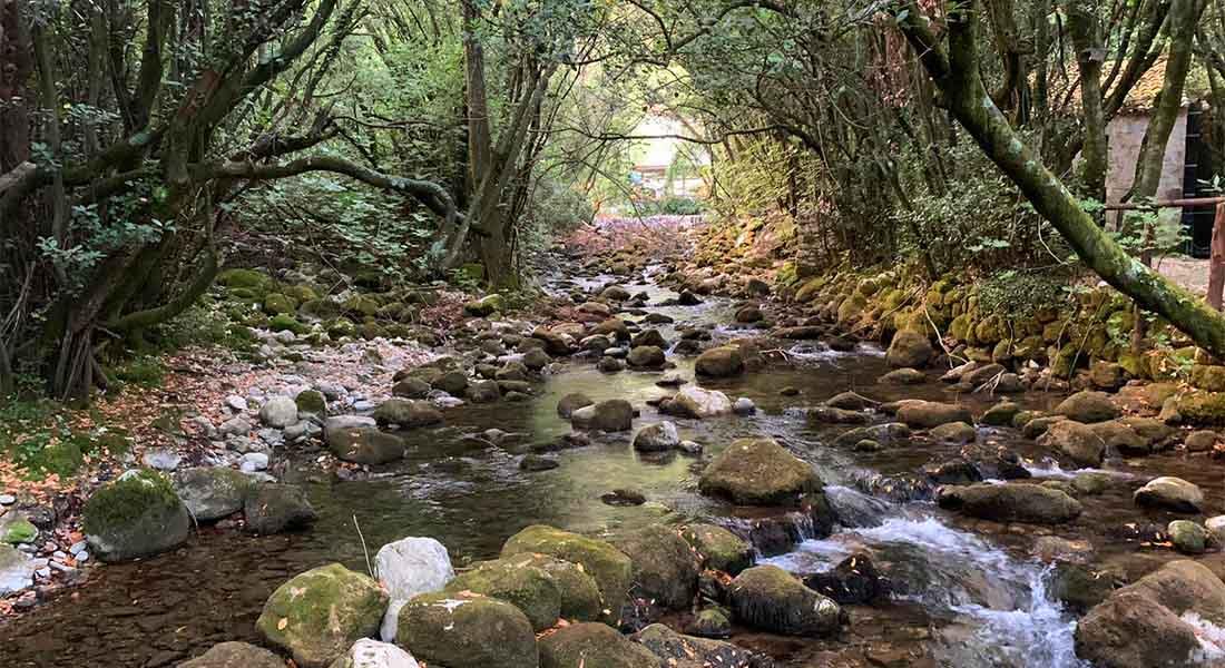 Rijeka u Konavlima