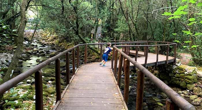 Kameni mlinovi na rijeci Ljutoj: izlet u Konavle