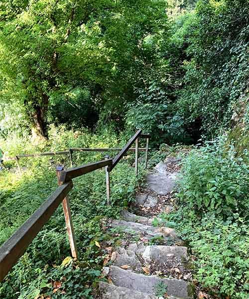 Staza do kaštela u Momjanu