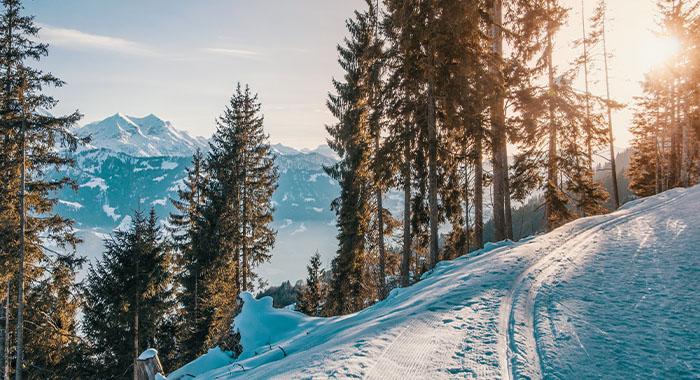 Top 5 skijaških destinacija: mini vodič