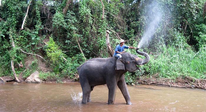 Misija Tajland: pleme Dugih vratova, slonovi, rafting i džungla